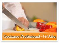 curso_chef_01_ro